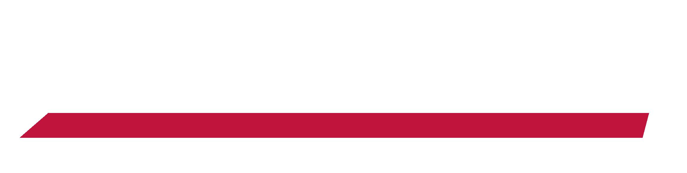 Control Systems Raven 4400 Wiring Diagram Logo